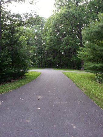 Philipsburg, Pennsylvanie : This is how all the driveways to the cabins are - very secluded