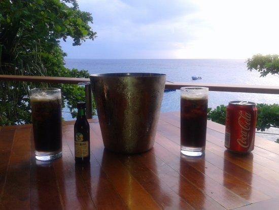 Royal Davui Island Resort: vistas