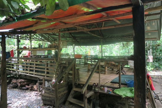 Lupa Masa Rainforest Camp: The common room where you will spend most of your time