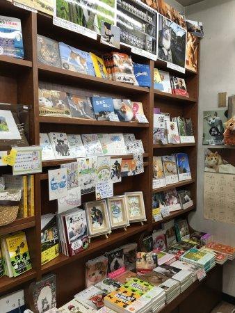 Kanda Jimbocho Bookstore Area: photo6.jpg