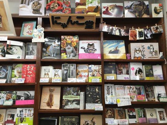 Kanda Jimbocho Bookstore Area: photo8.jpg