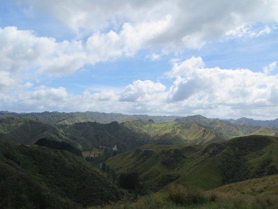 Owhango, Yeni Zelanda: view