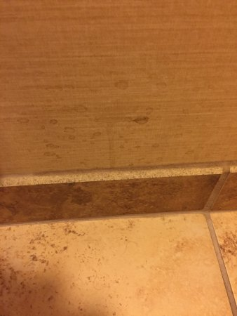 Hampton Inn Ft. Collins: Walls written on  and stained in many places. Caulking is moldy in many spots.