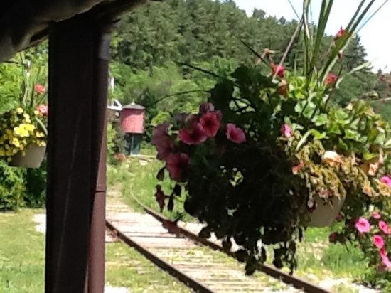 Wakefield, Kanada: Water tower and pretty hanging baskets seen from our dining table