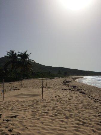 Brava Beach : photo2.jpg