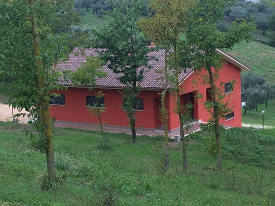 Torrita Tiberina, Italy: Az. Agr. San Gregorio in Sabina