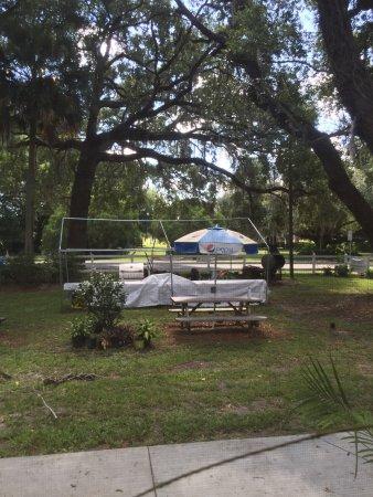 Webster, FL: photo7.jpg