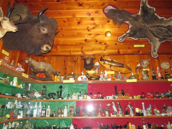 Mohawk Restaurant & Lounge: Interesting items to look at