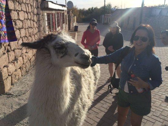 Hotel Cumbres San Pedro de Atacama: Toconao