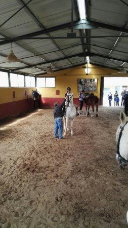 Galaroza, España: El Picadero La Suerte proporciona una actividad perfecta para admirar este bello lugar de la Sie