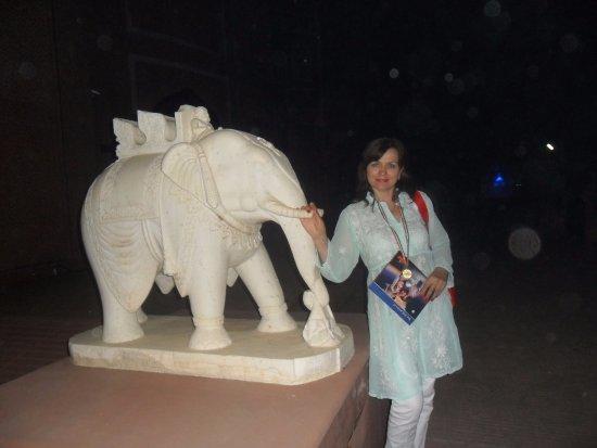Kalakriti Cultural & Convention Center: Вот такой замечательный слоник на территории центра