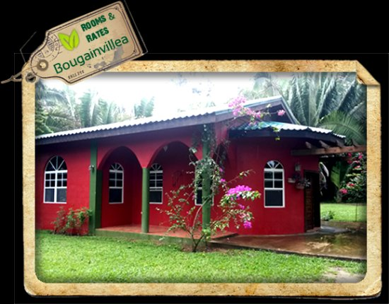 Macaw Bank, Belize: Exterior of The Bougainvillea Cabin