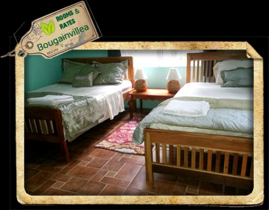 Macaw Bank, Belize: Queen sized beds in Bougainvillea Cabin