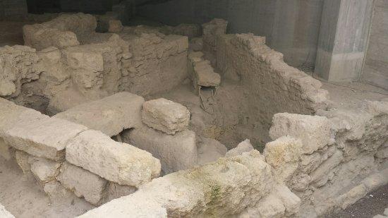 Domus Romana di colle Montescupolo