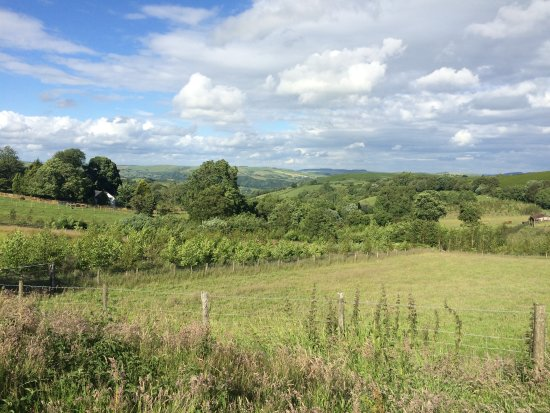 Knighton, UK: The daily view!