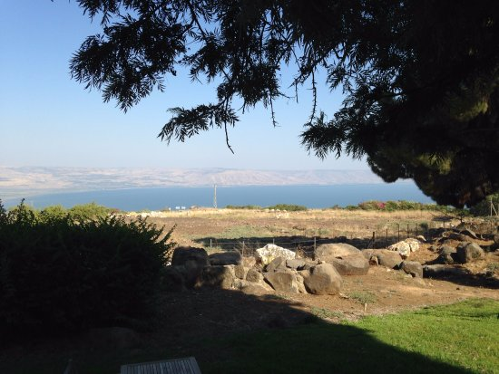 Vered Hagalil Guest Farm: View from our cabin.