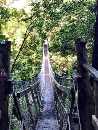 North Island, New Zealand: photo0.jpg