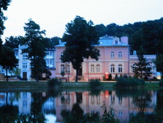 Hotel Trzebnica: obok hotelu, miejsce na spacery