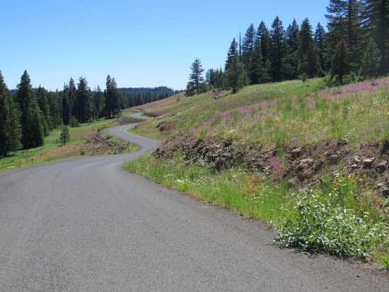 Oxbow, OR: Roadway...beautiful drive. Potholes need to be fixed on main road.