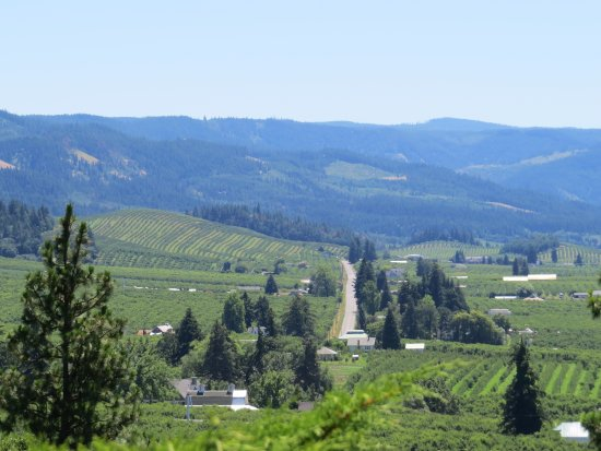 Hood River, OR: Lots of fruit farms