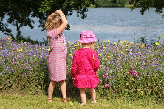 Brionne, ฝรั่งเศส: Une belle balade dans la nature, un beau moment de partage avec les enfants