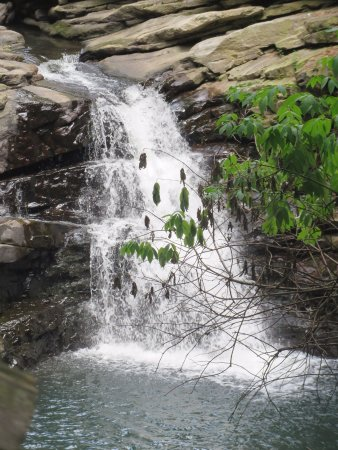 Nay Aug Park : waterfall