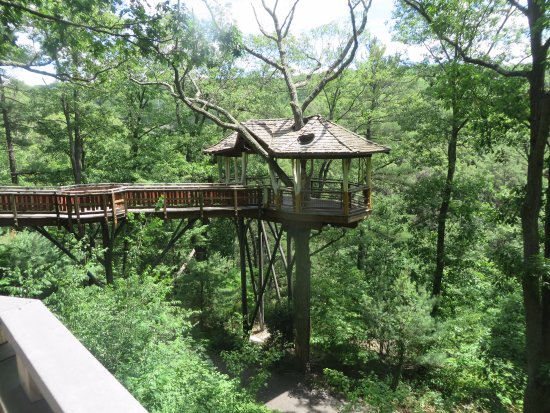 Nay Aug Park : Tree house to overlook the gorge and park