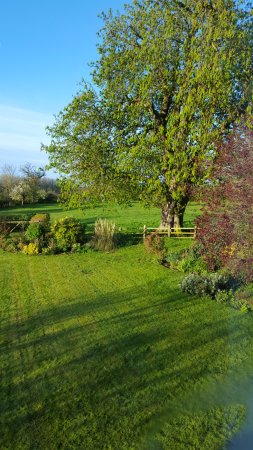 Mill Farm Bed & Breakfast : Garden view from my room