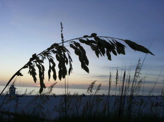 Belleair Bluffs, FL: 20160710_203712_large.jpg
