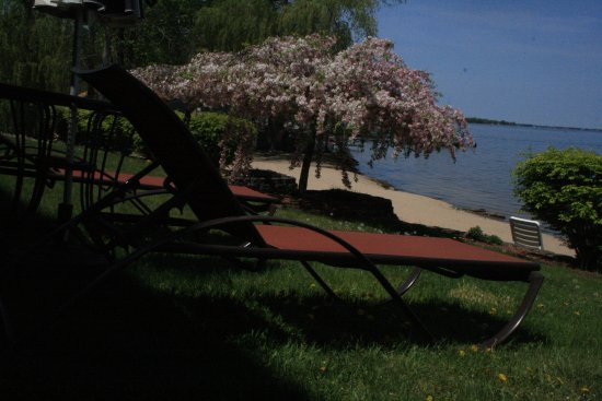 Beachfront Hotel Houghton Lake Michigan: You can sit in the back lawn if you don't wanna get in the sand