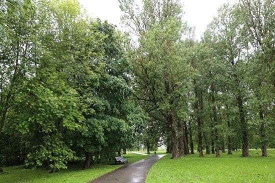 Parnu, Estonie: ビーチ公園(この奥に保護区はあります)
