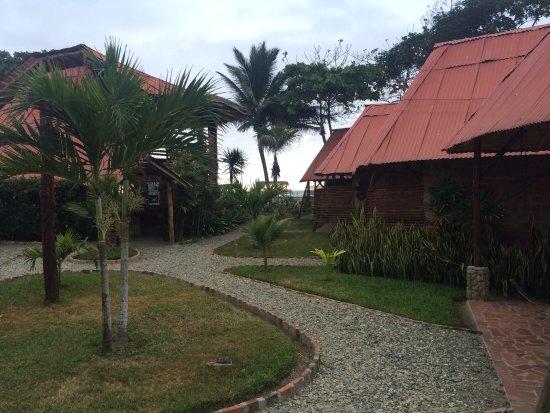 Ayampe, Ecuador: photo6.jpg