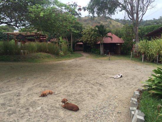 Ayampe, Ecuador: photo9.jpg