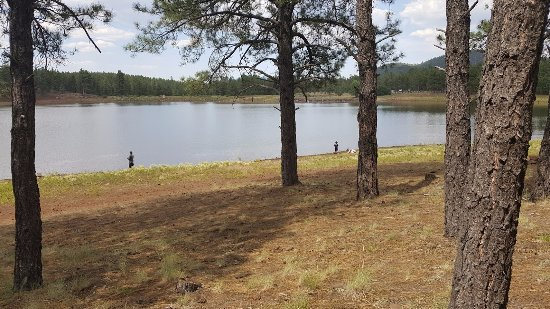 Dogtown Lake Campground: Dogtown Lake