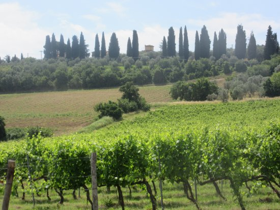 Montespertoli, อิตาลี: Tuscany landscape - castle in the background