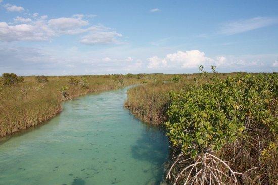 Green Maya Tulum