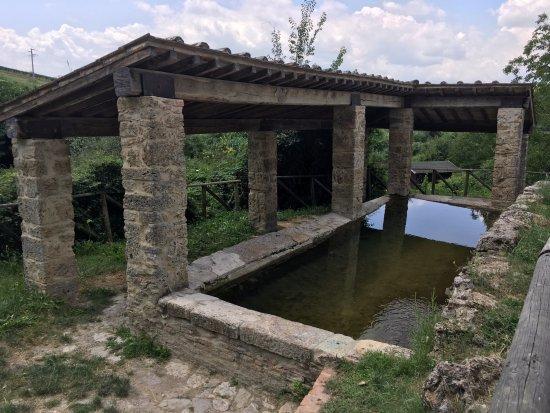 The Natural Warm Baths - Picture of Greath Bath, San Casciano dei ...