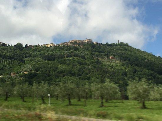 Montalcino, Italy: Hillside vineyards