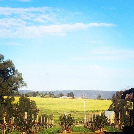 West Swan, ออสเตรเลีย: photo1.jpg