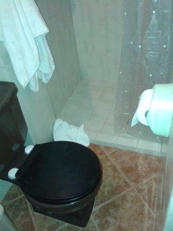 """Hostal Presidente : El baño, si bien limpio, muy incómodo y con la puerta """"recortada"""""""