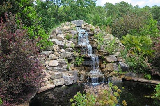 Coastal Georgia Botanical Gardens: Water Garden.