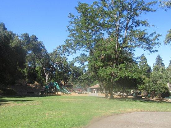 Grassy Area, Wildwood Park, Saratoga, CA