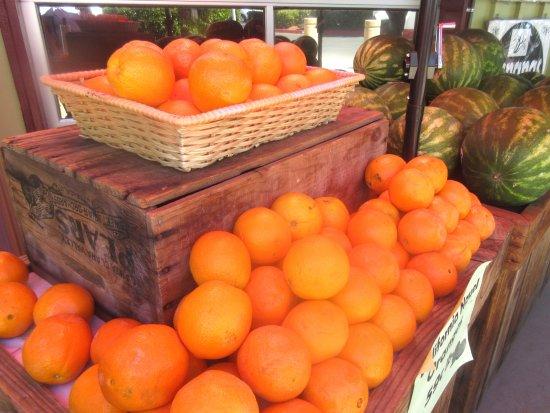 CJ Olson Cherries: Oranges, CJ Olson Cherries, Sunnyvale, Ca