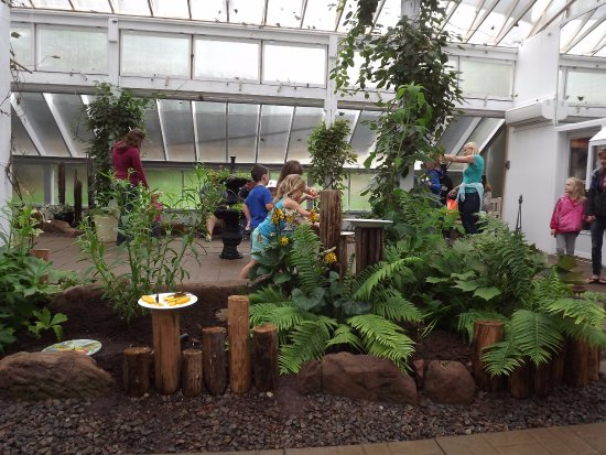 Gardens Of Hope: The Butterfly House. Everyone Enjoyed It, But The Kids  Especially