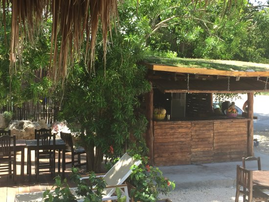 Hotel and Hostal El Punto: Bar & Resto