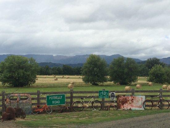 Roseburg, Oregon: photo4.jpg