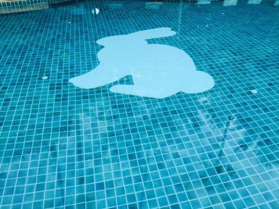 Rabbit Resort: photo2.jpg