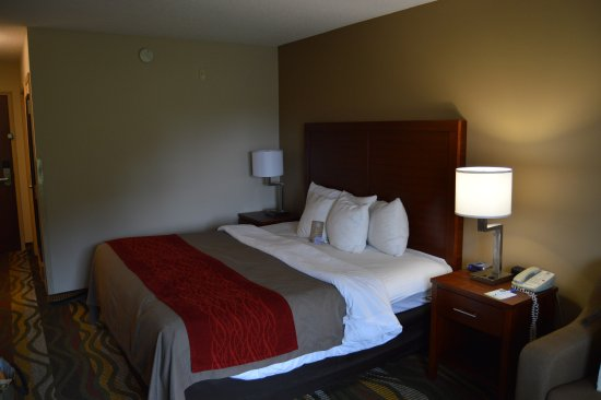 Foto Comfort Inn & Suites - Lookout Mountain