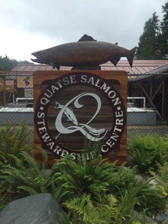 Quatse Salmon Stewardship Centre: photo0.jpg