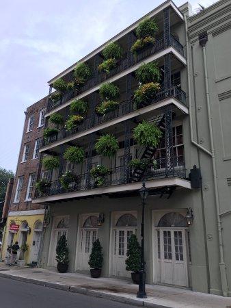 Bienville House: photo1.jpg